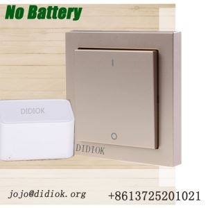Didiok Wall Switch Socket Wireless Smart Light Switch